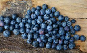 borovnice recepti