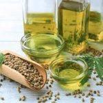 Konopljino olje za hujšanje