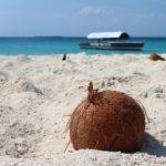 Raziskali smo skrivnosti kokosovega olja