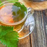Kako pripravimo koprivin čaj?