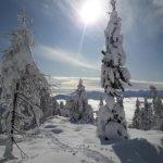 Kam v hribe – Fužinske planine in Triglavska skupina